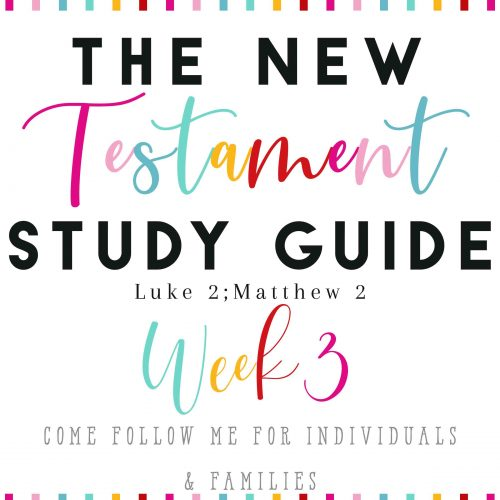 The New Testament Study Guide Week2