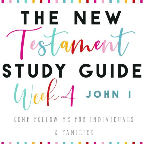 The New Testament Studay Guide Week4psd